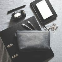 Jahn-Tasche – Practical pouch made out of leather / small leather bag in size L made out of buffalo leather, black, model 008